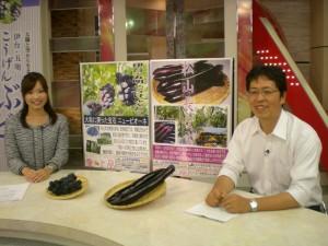 テレビ番組で地元野菜をPRする福田貴文さん(右)提供:福田貴文(松山市農林水産課)